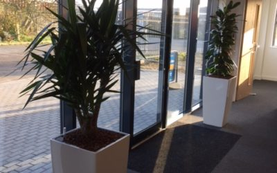 Our new offices can reduce stress